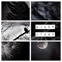 •The Night Court•