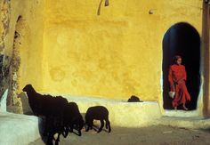 Harry Gruyaert - Egypt. Assouan. 1992.