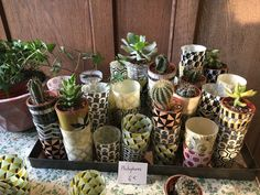 みなさん、こんにちは。パリ在住のライター、こじまかおりです。 パリジェンヌに人気の… Succulents, Planter Pots, Succulent Plants