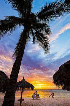 Bewonder de prachtige flora & fauna tijdens een 9-daagse relaxvakantie op Aruba🌸 https://ticketspy.nl/deals/aruba-sale-geniet-van-een-9-daagse-relax-vakantie-op-aruba-va-e499/