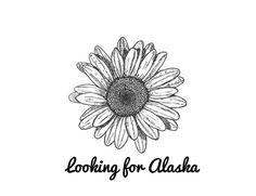 Buscando a Alaska.