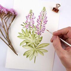 Botanical Art, Videos, Plants, Instagram, Art Print, Planters, Video Clip, Plant, Planting