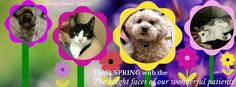 We are thinking Spring with the bright faces of our patients!