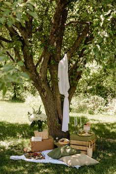 Styled intimate picnic – engagement picnic – proposal picnic – professional picnic services – backyard picnic – rustic picnic – romantic picnic