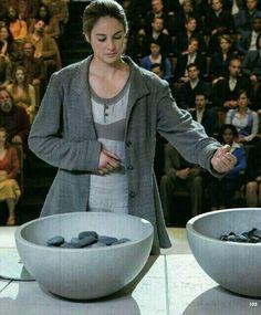 DAUNTLESS ~Divergent~ ~Insurgent~ ~Allegiant~
