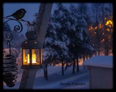 Talviaamu #photography #winter #finland100 #morning