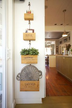 Kitchen Wall Display - Wood herb boxes hung with Command hooks.