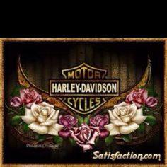 Harley Davidson Decals, Harley Davidson Tattoos, Harley Davidson Pictures, Harley Davidson Wallpaper, Harley Davidson Posters, Harley Davidson Motorcycles, Harely Davidson, Harley Tattoos, Motorcycle Art