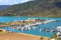Things to do at Whitsundays, Queensland. The Great Barrier Reef, offers 74 wonder islands