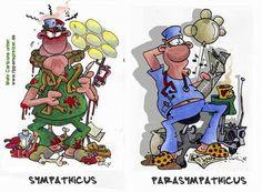 MEDI-LEARN Cartoons - Die Cartoons von Rippenspreizer