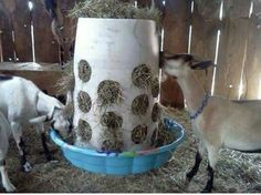 Great hay feeder idea! For sheep goat horses or more