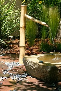 Amazon.com: patio pond kit