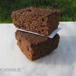GF Paleo Coconut Flour Brownies
