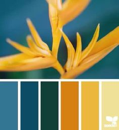 Nature Brights Color Palette #gold #yellow #cerulean