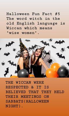 Halloween Halloween House, Halloween Night, Black Cat Adoption, Halloween Fun Facts, Celtic Festival, Old Irish, A Child Is Born, William Shatner, Walt Disney Pictures