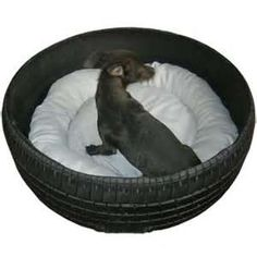 Old Tire Turned Pet Bed