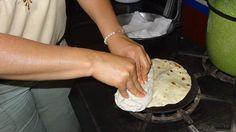 Corn tortillas recipe : SBS Food