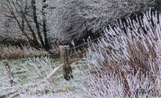 During The Hoar Frost, machine embroidery by Alison Holt 8 x 5 ins frame size 16x13 in
