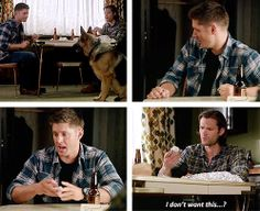 [gifset] Dean playing fetch <3  9x05 Dog Dean Afternoon #SPN #Dean #Sam
