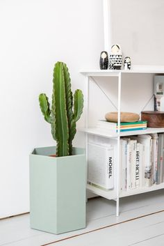 Shop and discover emerging brands from around the world Wall Hanger, Potted Plants, House Colors, Floating Nightstand, Shelves, Interior Design, Pillows, Storage, Table