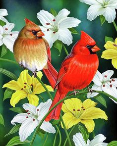 beautiful animal art - Cardinal Day 2 Art Print by JQ Licensing Cross Paintings, Original Paintings, Canvas Art, Canvas Prints, Art Prints, Picture Gifts, Thing 1, 5d Diamond Painting, Amazon Art