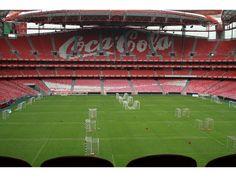 I Jornadas BTL – SLBenfica no Auditório Cosme Damião - 21 de Maio no Estádio da Luz