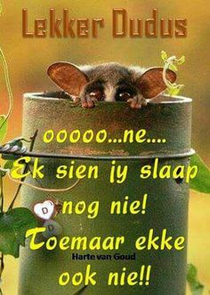 Greetings For The Day, Lekker Dag, Good Knight, Good Night Sleep Tight, Afrikaanse Quotes, Goeie Nag, Birthday Wishes Quotes, Good Night Sweet Dreams, Night Wishes