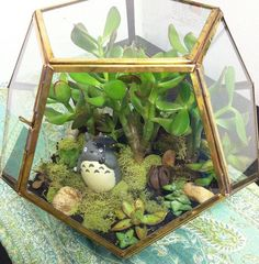 Totoro in a dodecahedron terrarium