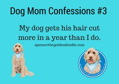 Dog Mom Confession -