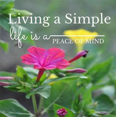 Living a simple life is a state of mind | In order to keep my mind clear of unwanted clutter, I spend a few minutes throughout the day connecting with my senses. http://oursimplelife-sc.com