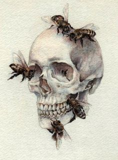 Bees with skull