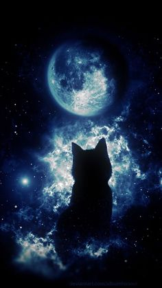 Cat in Space – Galaxy Art Tier Wallpaper, Wolf Wallpaper, Tumblr Wallpaper, Animal Wallpaper, Galaxy Wallpaper, Colorful Wallpaper, Black Wallpaper, Wallpaper Backgrounds, Mobile Wallpaper