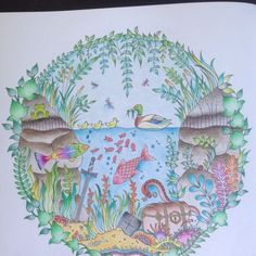 enchanted forest coloring book finished - Google Search
