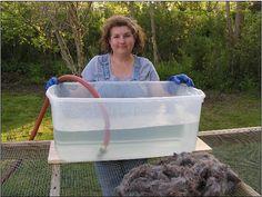 Our original Ten Good Sheep wool fleece washing and scouring tutorial
