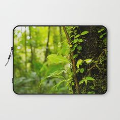 #jungle #forest #nature #rainforest #landscape #green #photography #laptop #ipad #case #sleeve