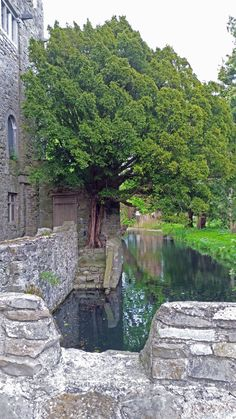 Drimnagh castle in Dublin Ireland has something mystical to it.