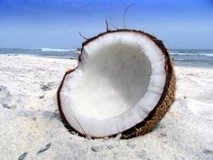 #Coconut oil has been in use as hair oil for ages and it has shown amazing results. In India and other parts of Asia it is used in #hair care products for ages.