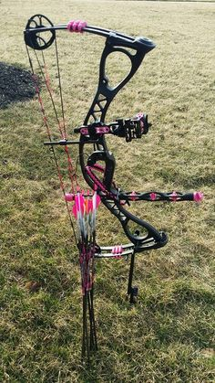 Hoyt Charger Vicxen Limited Edition. What bow is right for you?