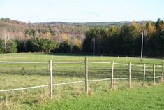 When you keep horses they need a lot of space and making a paddock by fencing a large area is not exactly cheap. It is also usually time consuming. Electric fencing provides a reasonable cost answer. Diy Horse Fencing, Pasture Fencing, Electric Fencing For Horses, Horse Pens, Horse Paddock, Horse Shelter, Country Fences, Horse Property, Horse Stalls