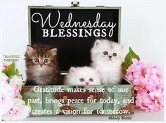 ❤️Wednesday Blessings