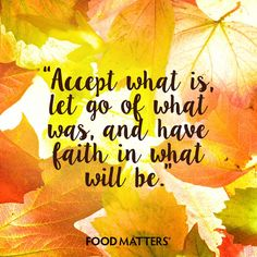 It's time to let go of what no longer serves you!  www.foodmatters.com #foodmatters #FMquotes #youarewhatyoueat