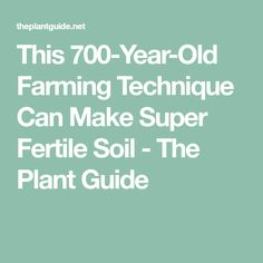 This 700-Year-Old Farming Technique Can Make Super Fertile Soil - The Plant Guide