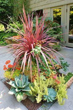Front yard plant ideas