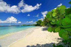 Salomon beach, St John USVI