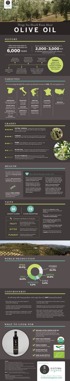 Things you should know about olive oil and its history, health benefits, and uses