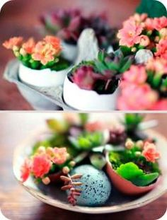 Today we are not going with you to paint or decorate their eggs painted and sequins. Today, we put him in the shells spring greens, which we will create a festive mood. And of the remaining eggshells do mini vases for flowers))