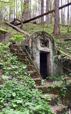 Hiker discovers an abandoned town inside tennessees great smoky the fairy house in great smoky mountains national park publicscrutiny Images