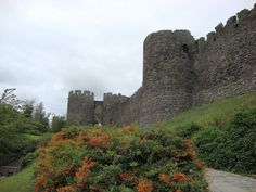 Conwy Castle in Wales. #Europe #Excursion