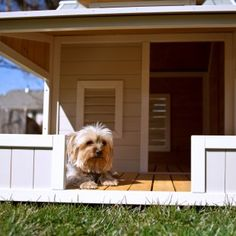 Precision Pet Outback Savannah Dog House with Porch 2713-27123 - Dog Houses at Dog Houses