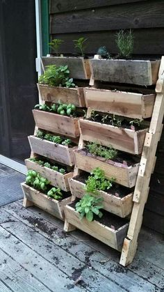 jardinage culture potager pour balcon appartement Kinda like a bookshelf planter.